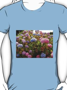 Riot of Hydrangea Blossoms - Pink, Blue and Purple T-Shirt