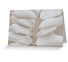 Robinia  Greeting Card