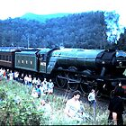 Flying Scotsman Downunder by John Craig