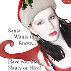 Santa Wants to Know... by Rebecca Bryson