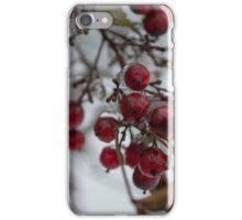 Frosted American Holly  iPhone Case/Skin