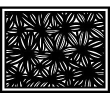 Mezzatesta Abstract Expression Black and White Photographic Print
