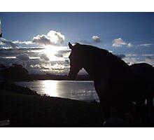Admiring the sunset Photographic Print
