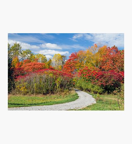 Backroad to Autumn Photographic Print
