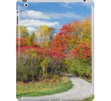 Backroad to Autumn iPad Case/Skin