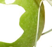 iEat - Apples Sticker