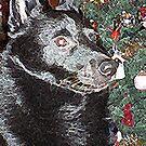 Mr. Snugglebear's Christmas 3 by OzzySkateboard
