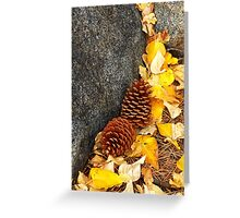 Fall Pine Cones  Greeting Card