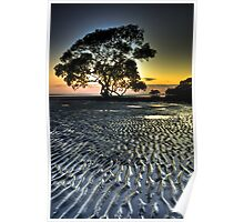 Nudgee Beach at Dawn Poster