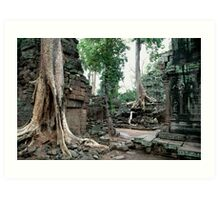 Rooted in Antiquity (3) Art Print