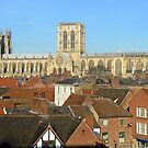 York Minster by AARDVARK