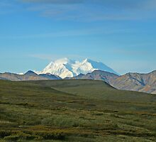 Mount Denali by dmark3