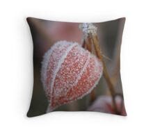 Chinese Lanterns with an Icy Coat Throw Pillow