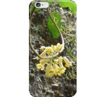 Wonga vine with Blackthorn iPhone Case/Skin