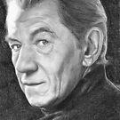 Ian McKellen (x-men - Magneto) by Samantha Norbury