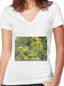 Thorn tree blossoms Women's Fitted V-Neck T-Shirt