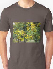 Thorn tree blossoms T-Shirt