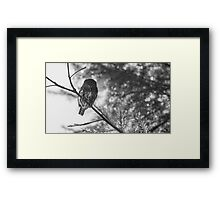 Owl in the Pixel Snow Framed Print