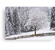 Snow! Canvas Print