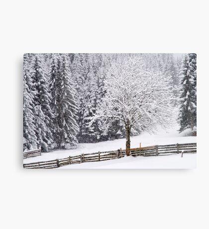 Snow! Metal Print