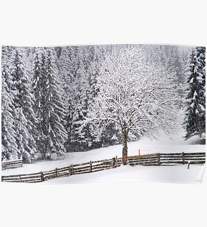 Snow! Poster