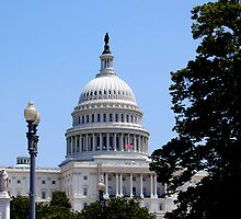 Capital Building, Washington DC by Pat Herlihy