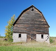 Barn in Bayfield by Shelby  Stalnaker Bortone