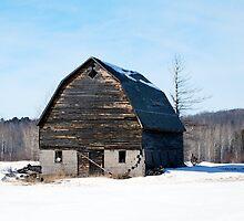 Barn in Winter by Shelby  Stalnaker Bortone