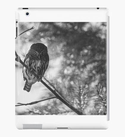 Owl in the Pixel Snow iPad Case/Skin