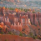 Sandstone castles in Bryce Canyon by Meeli Sonn