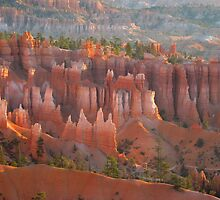 Sandstone castles in Bryce Canyon by loiteke