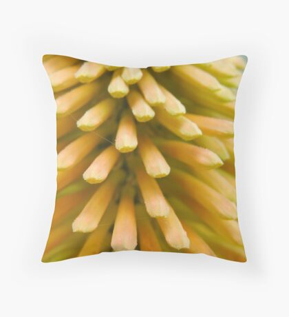 Red-Hot Poker  Throw Pillow
