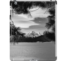 Vista over Lake Pukaki, New Zealand iPad Case/Skin