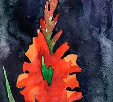 watercolor drawing of red gladiolus by OlgaBerlet