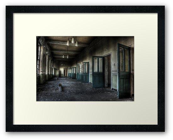 Doors-a-plenty by Richard Shepherd