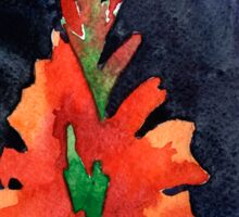 watercolor drawing of red gladiolus Sticker