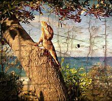 Frilled neck lizard by john NORRIS