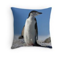 Chinstrap Penguin, Antarctic Peninsula Throw Pillow