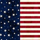 Stars and Stripes by Lisa Marie Robinson