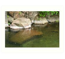 Columbia River Gorge Stream Reflections Art Print