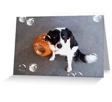 Pumpkin Eater Greeting Card