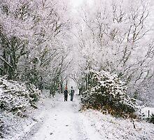 Snowy Walk 2 by rosie320d