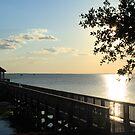 Currituck Pier at Sunset by Jenn  Dixon