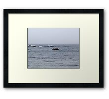 Just Too Foggy to Fly Framed Print