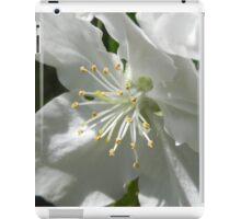 Apple Blossom 2 iPad Case/Skin