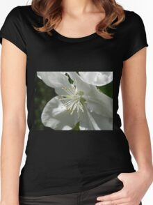 Apple Blossom 2 Women's Fitted Scoop T-Shirt