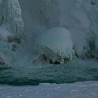 Yep They're Frozen © by © Hany G. Jadaa © Prince John Photography