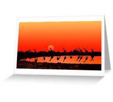 SUNSET WITH GIRAFFES Greeting Card