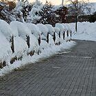 Frozen Path © by © Hany G. Jadaa © Prince John Photography