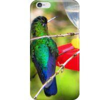 Sneaking Up On An Irazu Hummingbird iPhone Case/Skin
